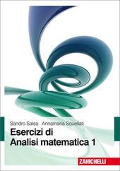 Esercizi di analisi matematica. Vol. 1