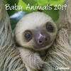 Calendario 2019 TeNeues 30 x 30. Baby Animals. Cuccioli