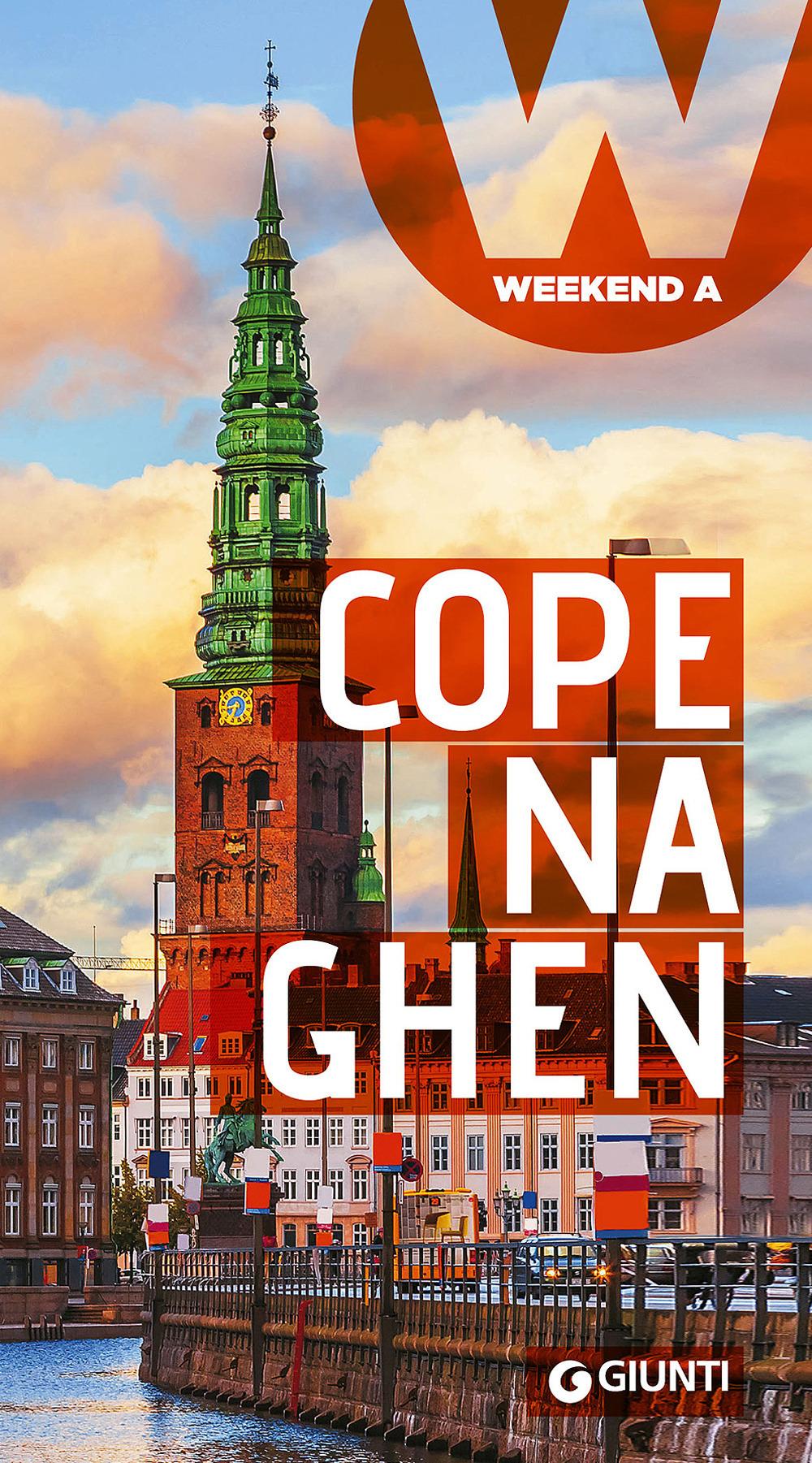 (NUOVO o USATO) Copenaghen