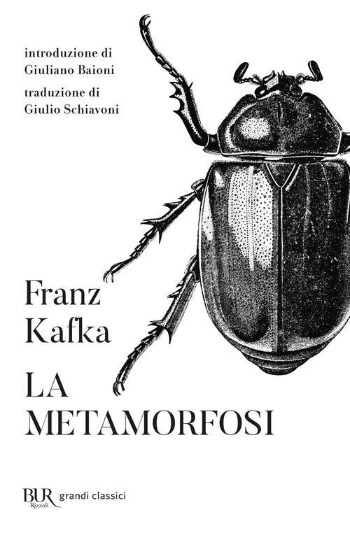 Risultati immagini per kafka la metamorfosi