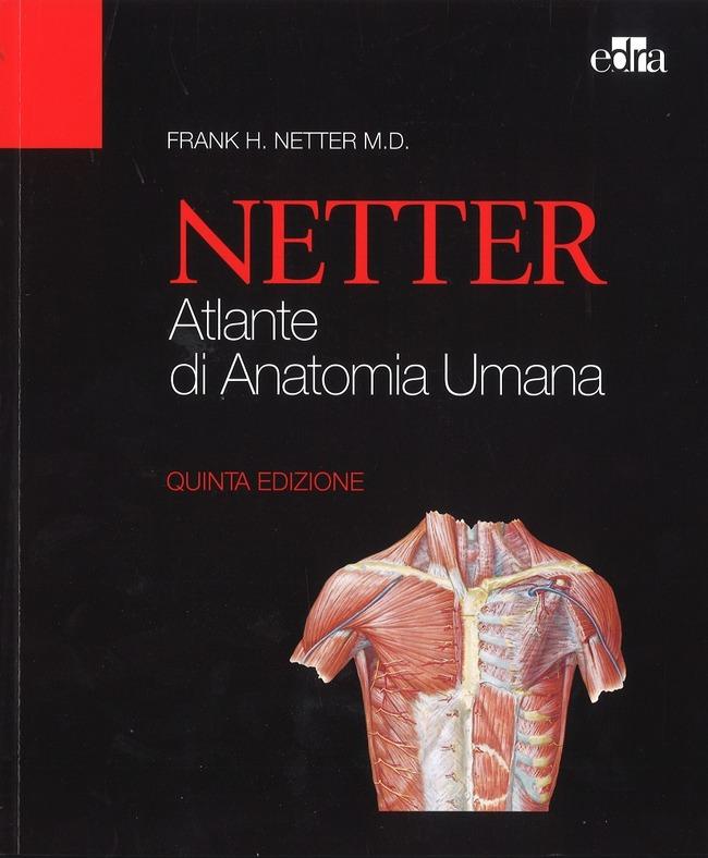 Netter Gray. L\'anatomia. La chiarezza e il fascino dell\'anatomia ...