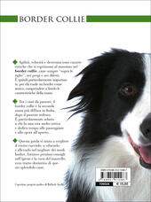 Border collie  - Valeria Rossi Libro - Libraccio.it
