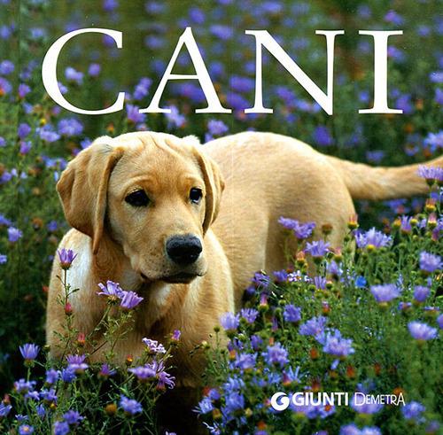 Image of (NUOVO o USATO) I cani. Ediz. illustrata