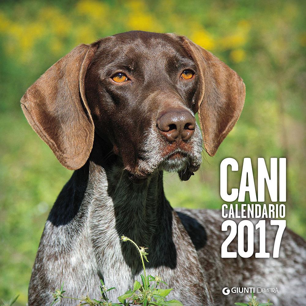 Image of Cani. Calendario 2017
