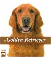 Il golden retriever. Ediz. illustrata