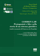 Common law  - Alessandro Torre Libro - Libraccio.it