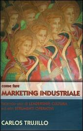Come fare marketing industriale facendo uso di leadership, cultura ed altri strumenti operativi