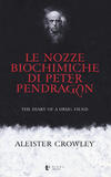 Le nozze biochimiche di Peter Pendragon. The diary of a drug fiend